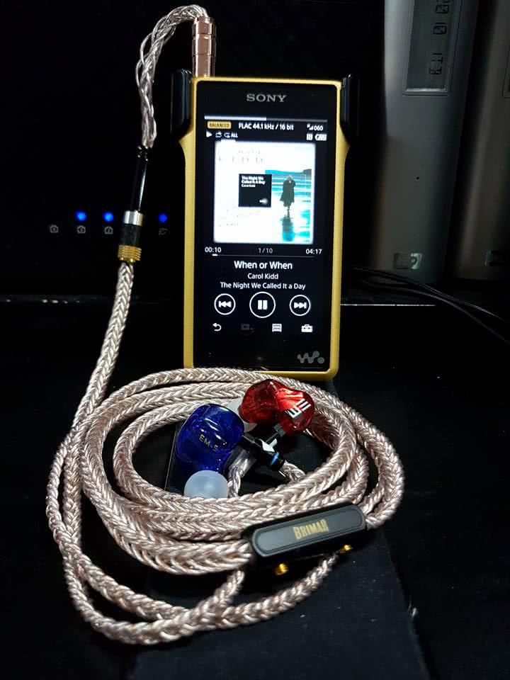earphonia.com_rudirocks_Sony NW-WM1Z_Etertnal Melody_EM-5_Brimar6